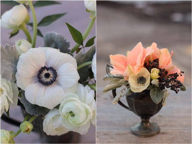 Anemone and Amaryllis