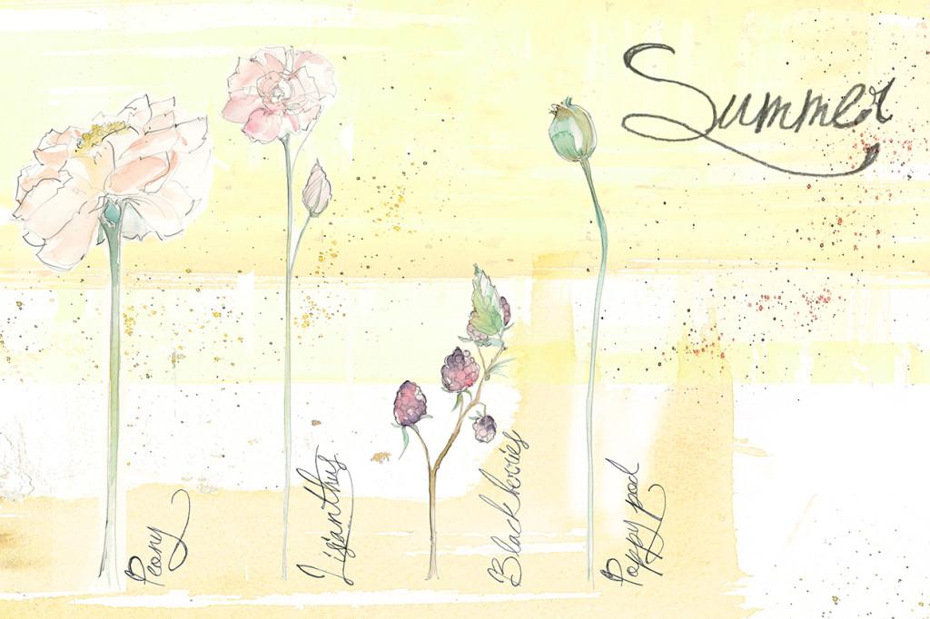 LNF_SeasonsPage_Summer_Revised