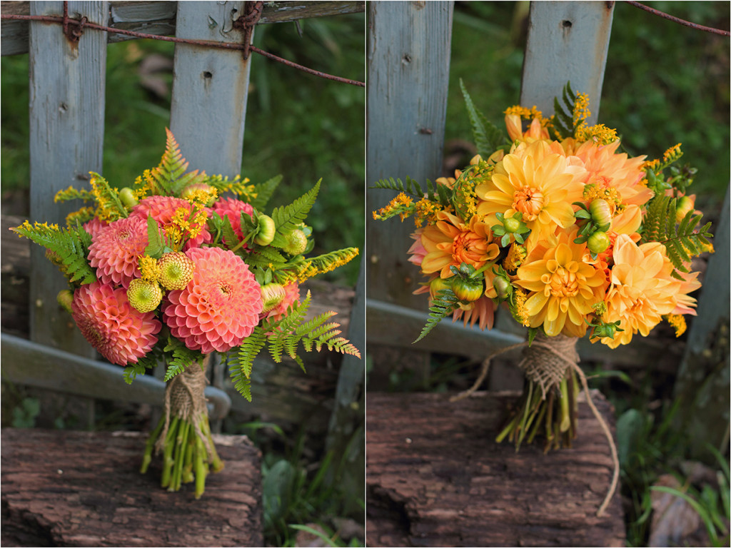 October_dahlias2