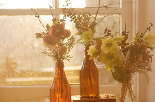 Coming Clean Love N Fresh Flowers