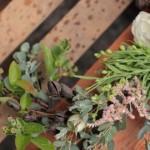 Love 'n Fresh Flowers56