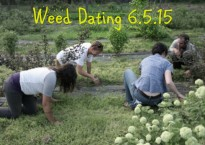 Weed Dating 6.5