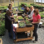 Designer's Cutting Garden Master Class having fun learning in our greenhouse