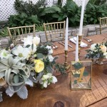 Spring wedding at the Horticulture Center
