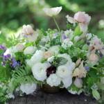 A spring arrangement featuring Iris