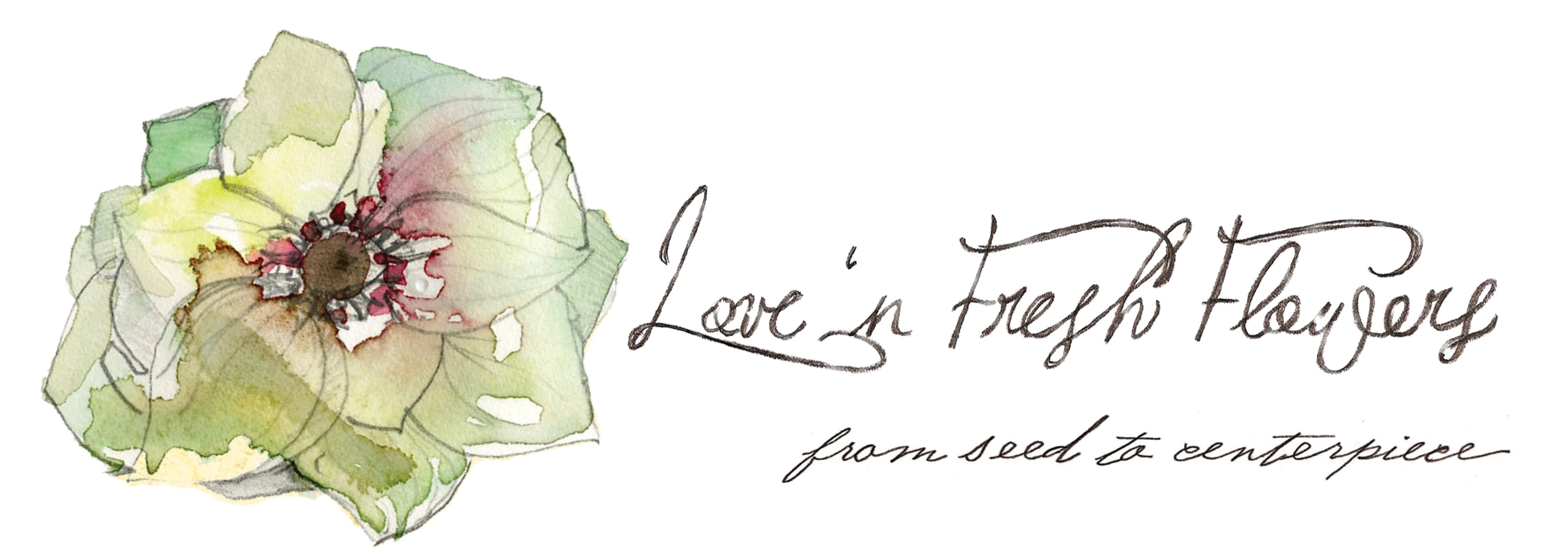 Organic Flower Csa Love N Fresh Flowers